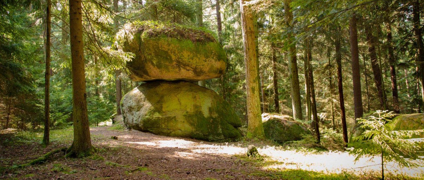 guthof-wanderurlaub-bayerischer-wald-schwammerlstein